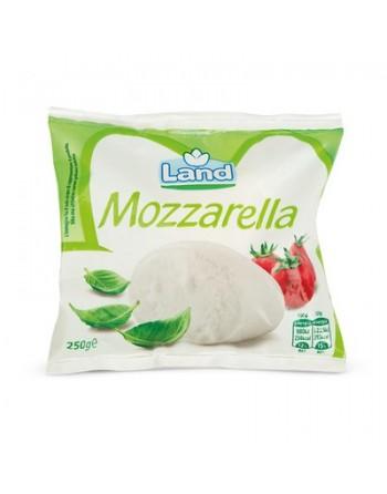 MOZZARELLA 250 gr